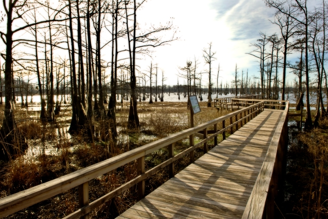 Walkout Pier at Black Bayou