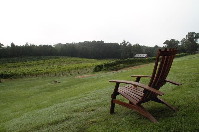 photo contest, monroe louisiana, landry vineyards, vineyard, wine