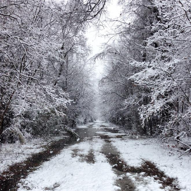 snow, louisiana snow, monroe louisiana